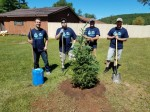 tree planting grant withlogos